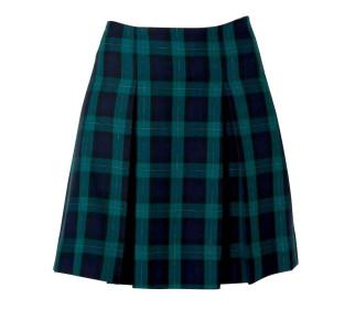 A-Line Hipster Skirt